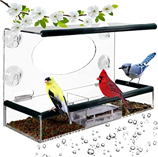 Birdious Wild Window Bird Feeder for Outside: Enjoy Unique View Small and Large Birds. Clear See Through, Easy Mounted 4 Strong Suction Cups with Removable Seed Tray. Unusual Gifts