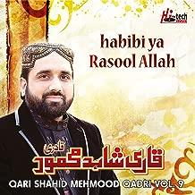 Habibi Ya Rasool Allah, Vol. 9 - Islamic Naats