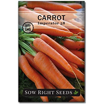 Sow Right Seeds - Imperator 58 Carrot Seed for Planting - Non-GMO Heirloom Packet with Instructions to Plant a Home Vegetable Garden, Great Gardening Gift (1)