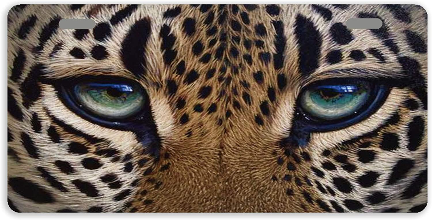 Eprocase License Plates Leopard Plate Novelty Low Quality inspection price Eyes Cover
