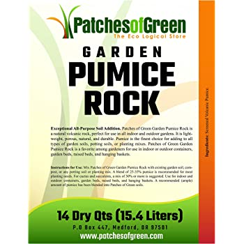 Patches of Green Bonsai & Succulent Garden Pumice Rock from 14 Dry Quarts