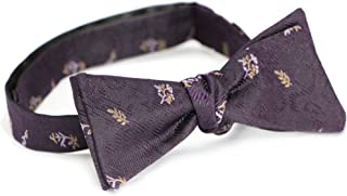 Doctor Who Style Journey Bow Tie