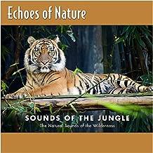 Best jungle new album Reviews
