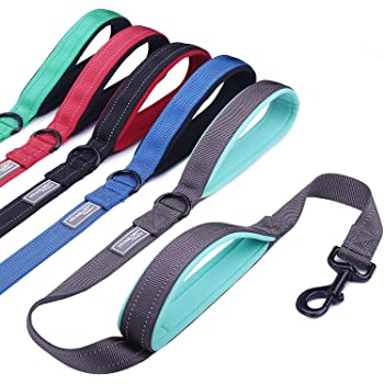 Vivaglory Dog Leash Traffic Padded Two Handles, Heavy Duty Reflective Leashes for Control Safety Training, Walking Lead for Small to Large Dogs