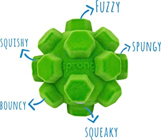 Best sprong dog toy Reviews