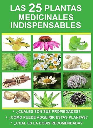 LAS 25 PLANTAS MEDICINALES INDISPENSABLES: ¿CUALES SON SUS PROPIEDADES? / ¿DONDE PUEDE