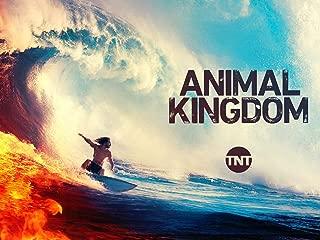 animal kingdom season 1 episode 1 watch