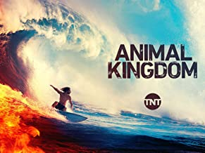 watch animal kingdom episode 1