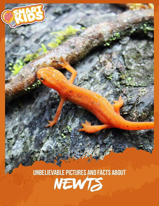 自発きらめく胴体Unbelievable Pictures and Facts About Newts (English Edition)