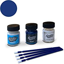 ScratchesHappen Exact-Match Touch Up Paint Kit Compatible with BMW Avus Blue (276) - Preferred