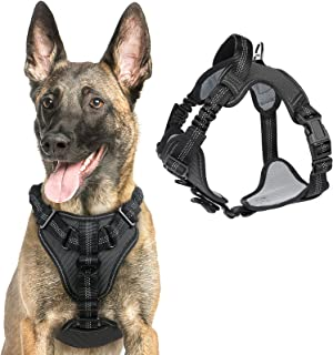 rabbitgoo Dog Harness No Pull, Adjustable Dog Walking Harness with 2 Metal Clips & Shock-Absorbing Bungee Straps, Soft Pad...