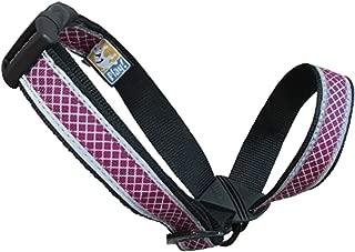 Kurgo Snout About Dog Head Halter | Headcollar for Dogs | No Pull Dog Training Collar | Dog Training Tool | Gentle Control while Walking | Reflective Trim | Coastal Blue & Raspberry Purple | 3 sizes