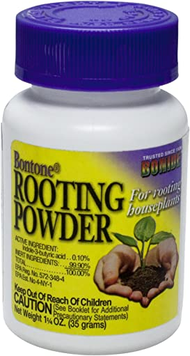 Explore rooting hormones for plants