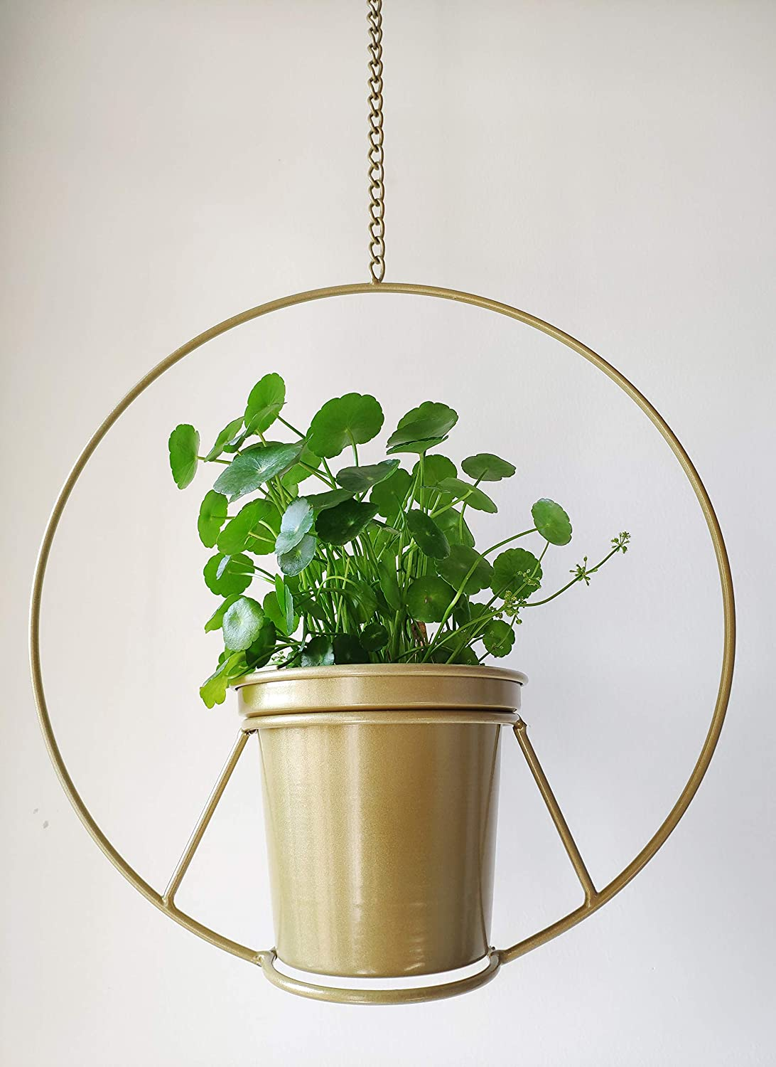 RISEON Boho Outstanding Gold Metal Plant Deluxe Hanger Planter Round Hanging