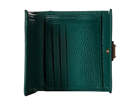 hoja Leather amp; ribete Bourke Tarjeta amp; Dooney New de solapa canela color SLGS Pebble de crédito con pequeña 1pIOnw