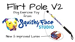 Squishy Face Studio Flirt Pole V2 with Lure Durable Dog Toy for Fun Obedience Training /& Exercise