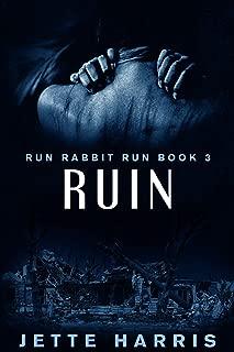RUIN: a serial killer thriller (Run Rabbit Run Book 3)