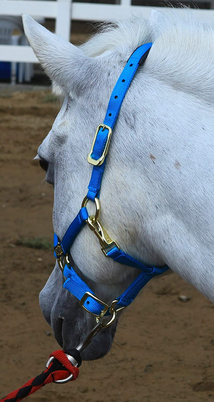 TEKE Horse Halter Adjustable with Cushioned Padding