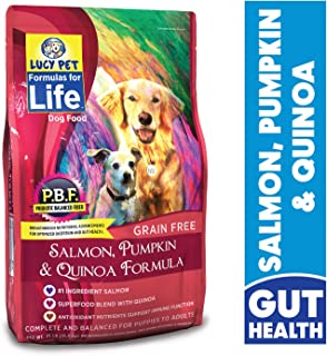 Lucy Pet Formulas for Life Gut Health Dry Dog Food Salmon, Pumpkin, and Quinoa