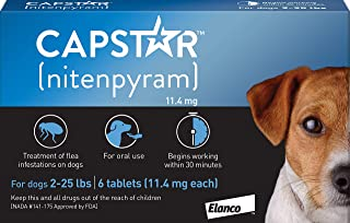 Best Capstar Fast-Acting Oral Flea Treatment for Dogs Review