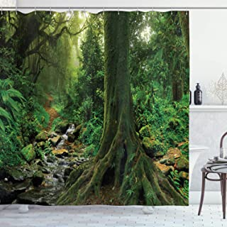 """Ambesonne Forest Shower Curtain, Rain Forest Scenery with River in The North Forest in The Early Morning Humid Fog Print, Cloth Fabric Bathroom Decor Set with Hooks, 75"""" Long, Forest Green"""