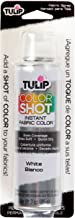 Best white upholstery fabric spray paint Reviews