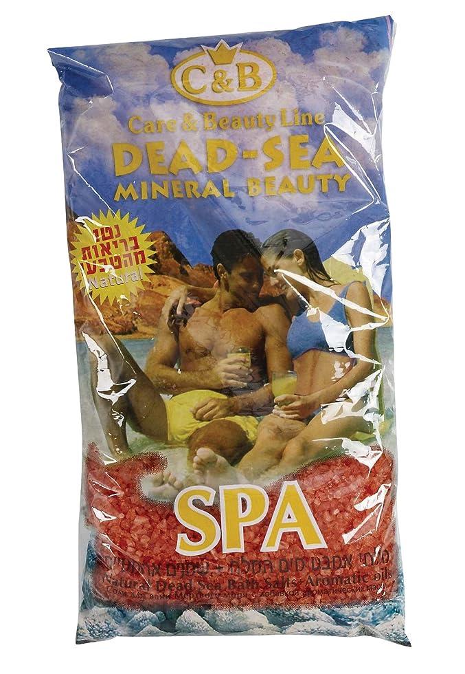一部現実的スロープ真正のイスラエル製 死海産入浴塩 500g カサつき、湿疹、ニキビの緩和に はがすタイプの良い香りのオイル (Bath Salts)
