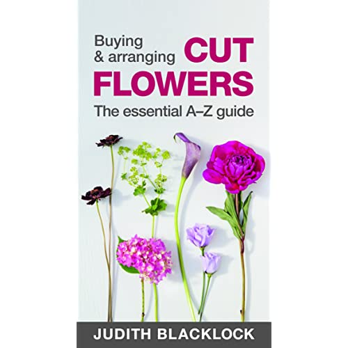 Buying Arranging Cut Flowers The Essential A Z Guide Judith