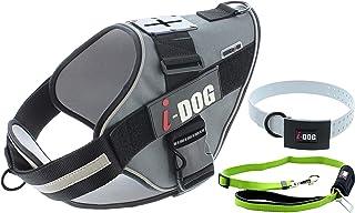 i-Dog Pack Harnais Chien NEOCAM Collier Blanc + Laisse avec Attache Voiture Verte (XL, Gris)