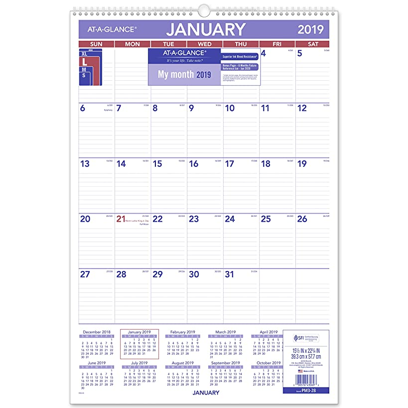 AT-A-GLANCE 2019 Monthly Wall Calendar, 15-1/2