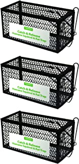 HARRIS Catch and Release Humane Cage Trap for Rats, Chipmunks, and Small Squirrels (3-Pack)