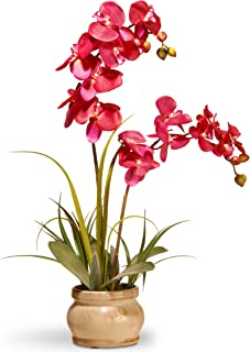 National Tree 24 Inch Purple Orchid in Decorative Ceramic Pot (RAS-N071061-1)
