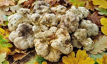 Spores White Truffle Mushrooms Mycelium Spawn Dried Seeds Kit for Planting Non GMO 0.25 oz