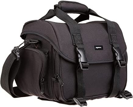 AmazonBasics Large DSLR Gadget Bag (Gray interior)