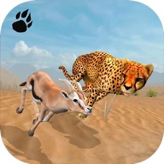 Cheetah Chase Simulator