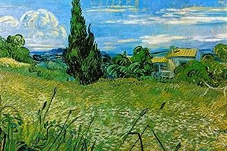 Vincent Van Gogh Green Wheat Field with Cypress Cool Wall Decor Art Print Poster 36x24