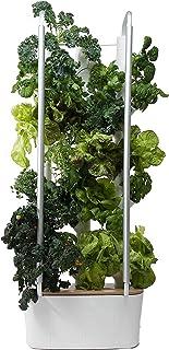 Gardyn Home - Indoor Vertical Garden - Smart Hydroponic Growing System with WiFi - 30 Indoor Plants - Great for Vegetable...