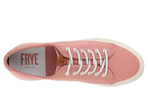 Maya Lace Low BlackBlushDenimGreyMintOff Frye White Canvas 7OqwqxH