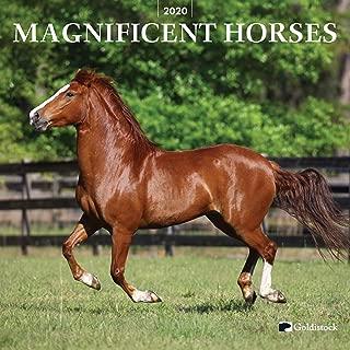 horse desktop calendar
