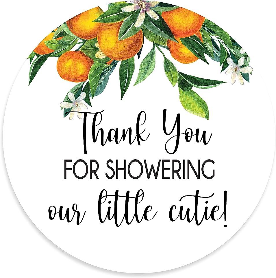 2 Round Orange Clementine Baby Shower Cutie Thank You Favor Stickers (40 Labels)