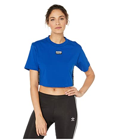 adidas Originals Cropped Tee (Collegiate Royal) Women