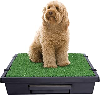 PetSafe Pet Loo Portable Indoor/Outdoor Dog Potty, Alternative to Puppy Pads, 3 Size Options for Small, Medium and Large B...