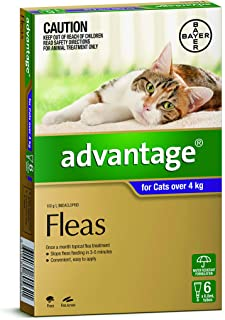 Advantage for Cats over 4kg, 6 Pack
