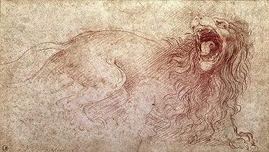 Leonardo da Vinci Sketch of a Roaring Lion Musee Bonnat in Bayonne 30