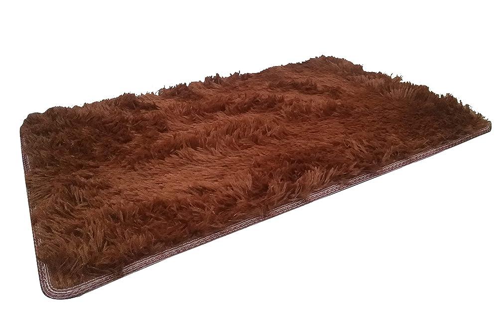 使用法算術シミュレートするX?WY カーペット 滑り止め付 洗える ラグ 防塵抗菌防臭 (ブラウン, 40×60)