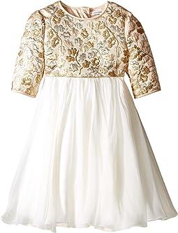 Floral Broccade Dress (Toddler/Little Kids)