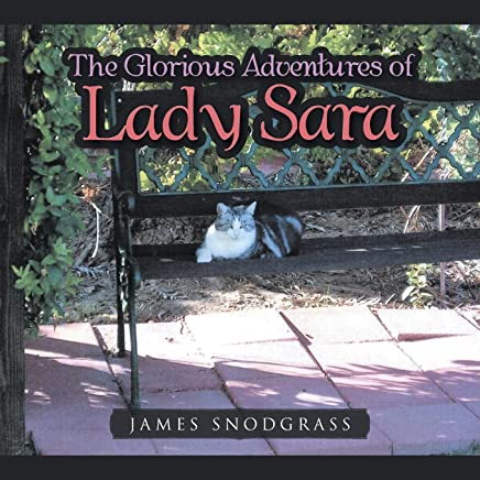 The Glorious Adventures of Lady Sara