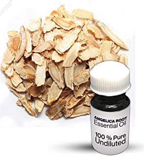 Angelica Root Essential Oil / 100% Pure Angelica Root Undiluted Essential Oil Premium Quality (10 ML)