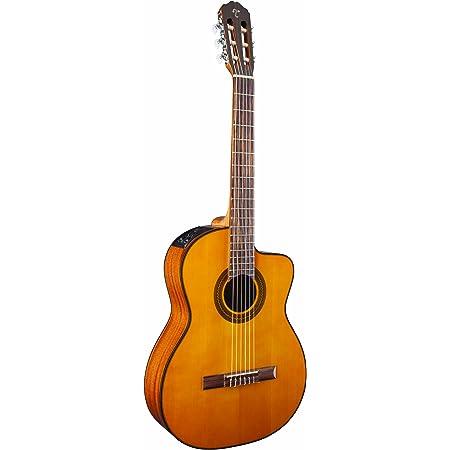 Takamine Guitarra eléctrica de cuerpo sólido de 6 cuerdas ...