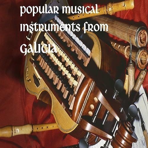 Popular Musical Instruments from Galicia de Grupo didáctico ...